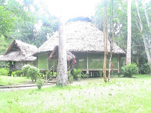 AmazonAccommodation2